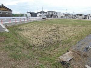 栗東市のお客様より、水田の畦の草刈りのご依頼をいただきました。