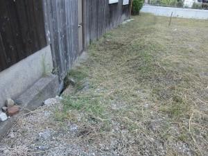 栗東市のお客様より草刈りのご依頼をいただきました。