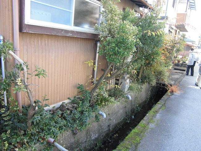 彦根市のお客様 空き家を放置していたら