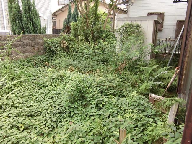 空き家草刈り