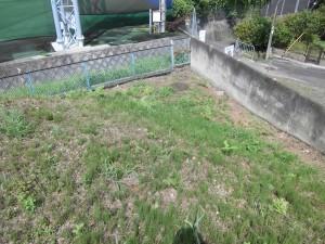 月ご依頼いただいております草津市の工場様の定期草刈りです。