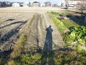 畑を田んぼにさせていただきました