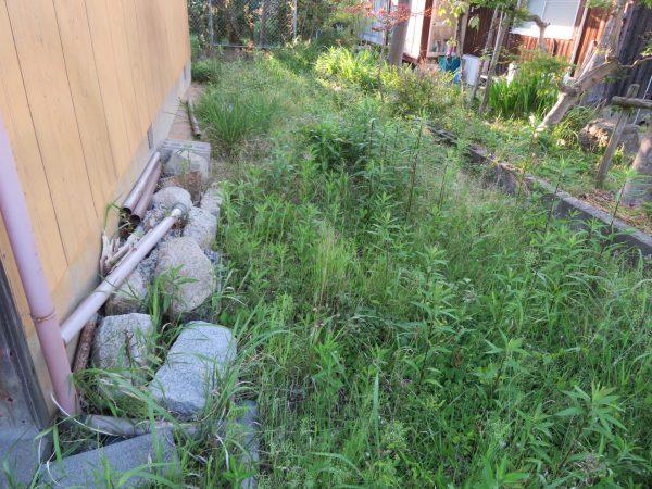 空き家の草刈りをさせていただきました。
