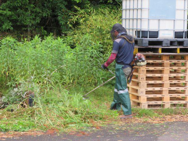 運送会社様より、草刈りのご依頼をいただきました。