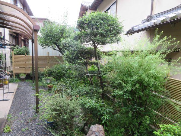 庭木の剪定と草むしりのご依頼をいただきました。