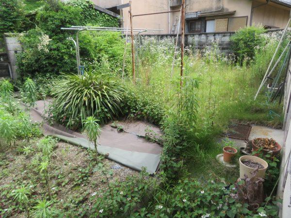空き家の草刈り・剪定のご依頼をいただきました。